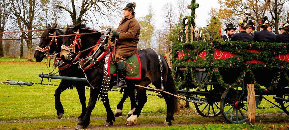 Pferdegespann zur Leonhardifahrt in Bad Tölz