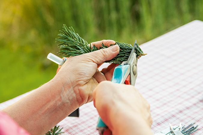Tannengrün zuschneiden – am schönsten wird's, wenn die Zweige gleich lang sind