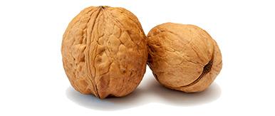Verschlossene Nüsse – ein Symbol für die Unergründlichkeit von Gottes Plan