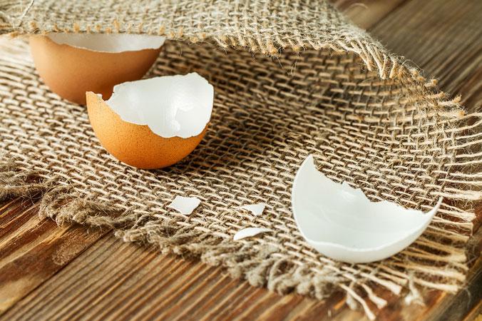 Natürlicher Dünger - Eierschalen