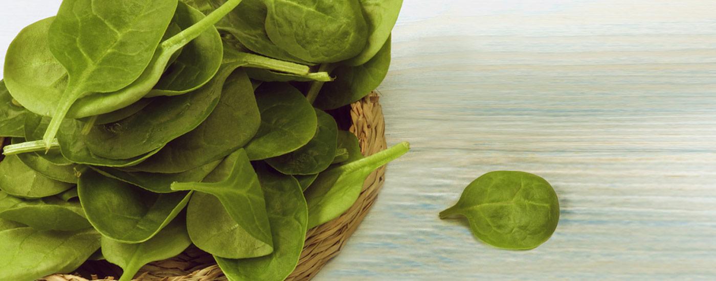 Spinat-Rezepte: Spinat im Körbchen