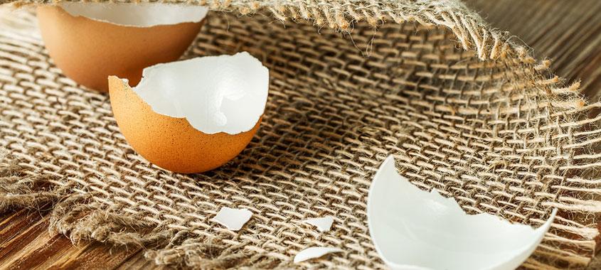 Ostereier verwerten – Eierschalen als Pflanzendünger oder Gesichtsmaske