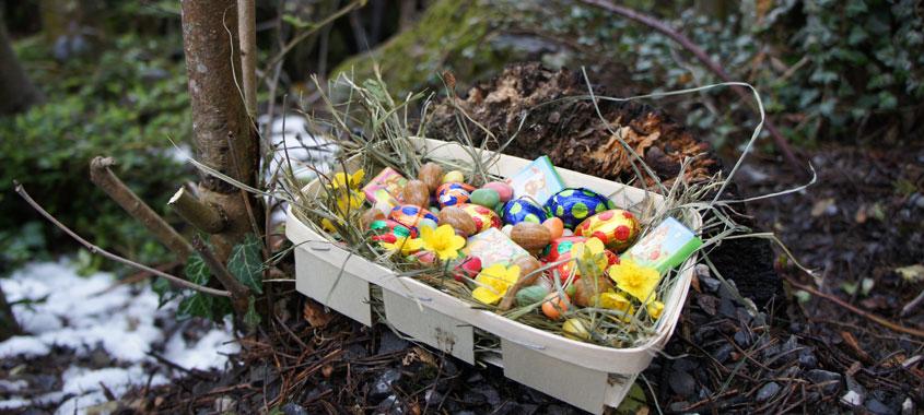 Ostereiersuche Natur- und Tierpark Goldau