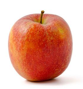 Apfelernte am Bodensee – Braeburn Apfel