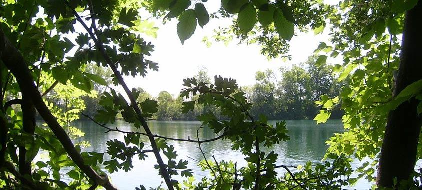 Blick auf den Langwieder See in München