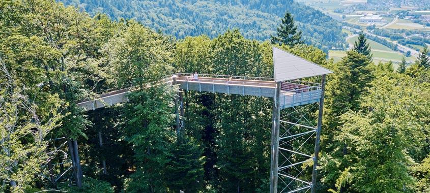 Der Baumkronenweg Waldkirch mit Aussichtsturm
