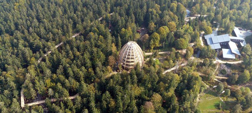Der Baumwipfelpfad im Bayerischen Wald mit Baumturm