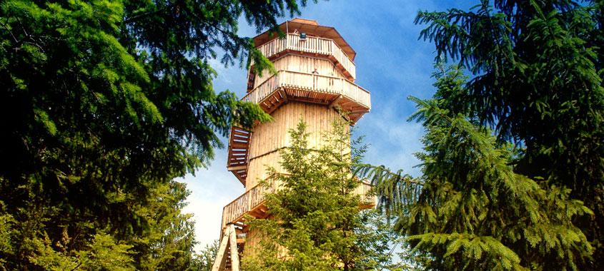 Der Erlebnisturm auf dem Baumwipfelpfad in Kopfing