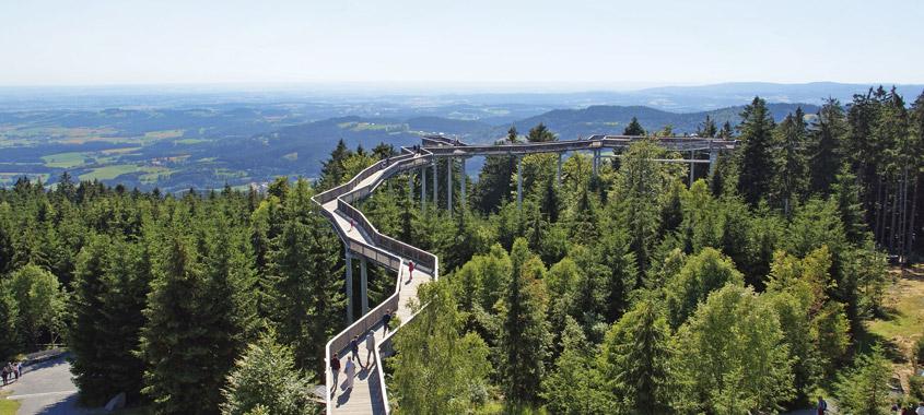 Der Waldwipfelweg in Sankt Englmar mit Aussicht auf den Bayerischen Wald