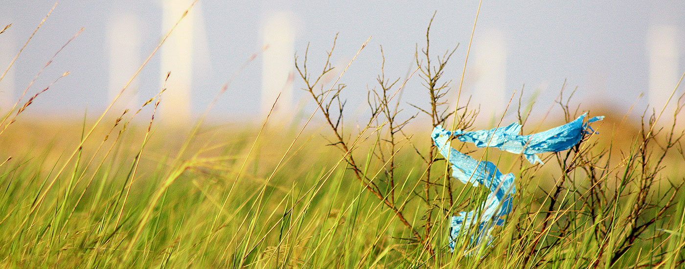 Landschaft mit in einem Strauch verfangenem blauem Plastikstreifen